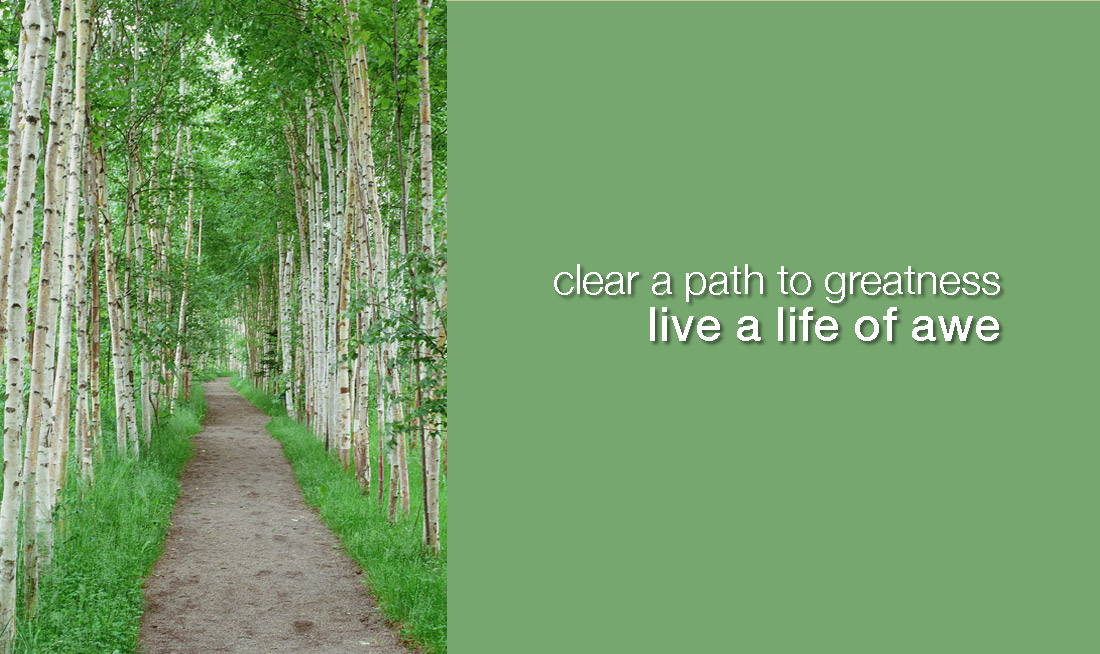 path through birch trees, captioned clear a path to greatness, live a life of awe